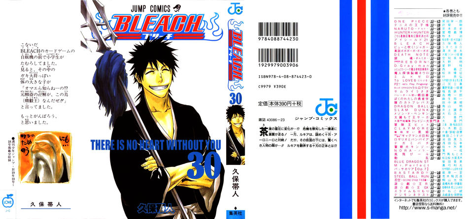 1_Bleach_vol_30.JPG