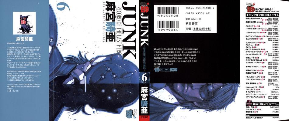 1_Junk_v06.jpg